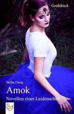 Amok - Novellen Einer Leidenschaft (Grossdruck)