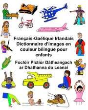Francais-Gaelique Irlandais Dictionnaire D'Images En Couleur Bilingue Pour Enfants Focloir Pictiur Datheangach AR Dhathanna Do Leanai