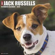 2019 Just Jack Russells Wall Calendar (Dog Breed Calendar)