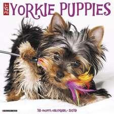 2019 Just Yorkie Puppies Wall Calendar (Dog Breed Calendar)