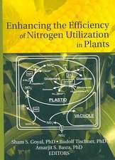 Enhancing the Effciency of Nitrogen Utilization in Plants
