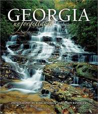 Georgia Unforgettable (Minnehaha Falls Cover)