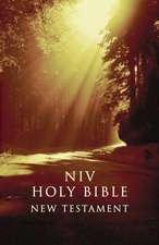 NIV, Outreach New Testament, Paperback, Brown