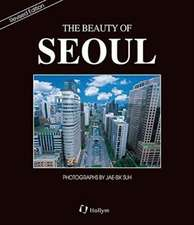 Beauty Of Seoul