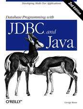 Database Programming with JDBC & Java 2e