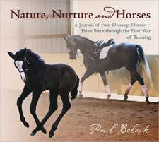 Nature, Nurture and Horses: A Journal of Four Dressage Horses in Training—From Birth through the First Year of Training