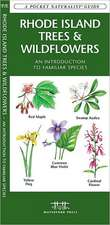 Rhode Island Trees & Wildflowers:  An Introduction to Familiar Species