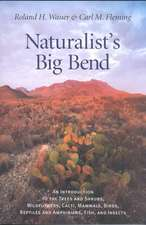 Naturalist's Big Bend:  An Introduction to the Trees and Shrubs, Wildflowers, Cacti, Mammals, Birds, Reptiles and Amphibians, Fish, and Insect