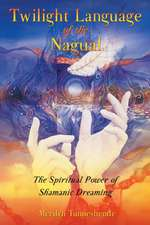 Twilight Language of the Nagual:  The Spiritual Power of Shamanic Dreaming