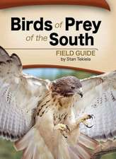 Birds of Prey of the South Field Guide