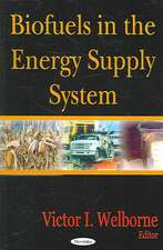 Biofuels in the Energy Supply System