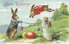Rabbits Jumping Eggs - Easter Greeting Card