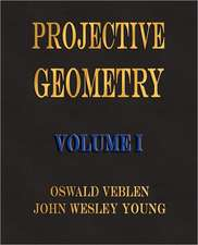 Projective Geometry - Volume I