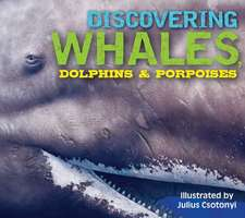 Discovering Whales, Dolphins & Porpoises