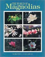 The World of Magnolias