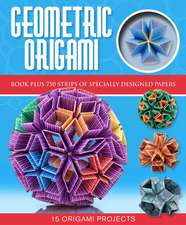 Geometric Origami [With Origami Paper]