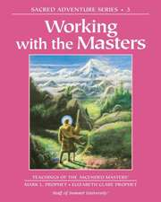 Working with the Masters