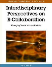 Interdisciplinary Perspectives on E-Collaboration