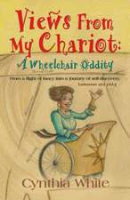 Views from My Chariot:  A Wheelchair Oddity