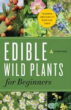 Edible Wild Plants for Beginners