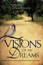 Visions of My Dreams