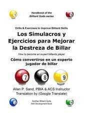 Los Simulacros y Ejercicios Para Mejorar La Destreza de Billar:  Como Convertirse En Un Experto Jugador de Billar