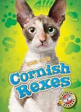 Cornish Rexes