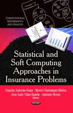 Statistical and Soft Computing Approaches in Insurance Problems