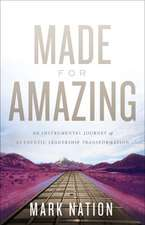 Made for Amazing: An Instrumental Journey of Authentic Leadership Transformation