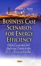Business Case Scenarios for Energy Efficiency
