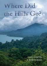 Where Did the Hills Go
