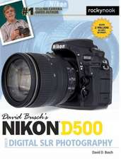 David Busch S Nikon D500 Guide to Digital Photography:  Solving the Mysteries of Taking Great Photos