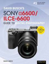 David Busch's Sony Alpha A6600/Ilce-6600 Guide to Digital Photography