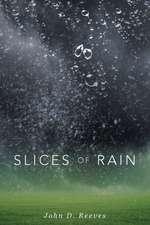 Slices of Rain