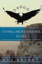 Flying Above Visions To See