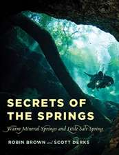 SECRETS OF THE SPRINGSWARM MIPB