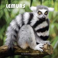 Lemurs Calendar 2019: 16 Month Calendar
