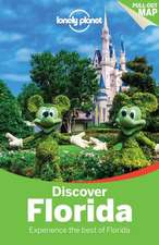 Lonely Planet Discover Florida:  Experience the Best of Maui