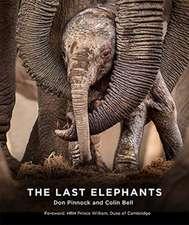 Bell, C: Last Elephants