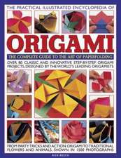 The Practical Illustrated Encyclopedia of Origami:  The Complete Guide to the Art of Papermaking