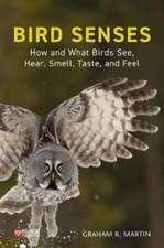 Bird Senses