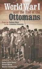 World War I and the End of the Ottoman Empire:  From the Balkan Wars to the Turkish Republic