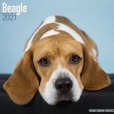Beagle 2021 Wall Calendar