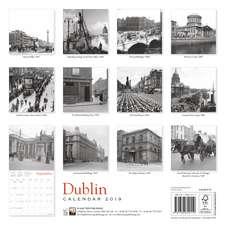 Dublin Heritage Wall Calendar 2019 (Art Calendar)