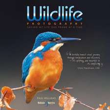 Wildlife photography from the edge ...