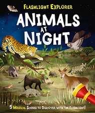 Regan, L: Flashlight Explorers: Animals at Night
