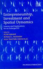 Entrepreneurship, Investment And Spatial Dynamics: Lessons And Implications for the Enlarged Eu