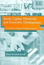 Social Capital, Networks And Economic Development: An Analysis of Regional Productive Systems