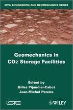 Geomechanics in CO2 Storage Facilities