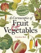 A Cornucopia of Fruit & Vegetables